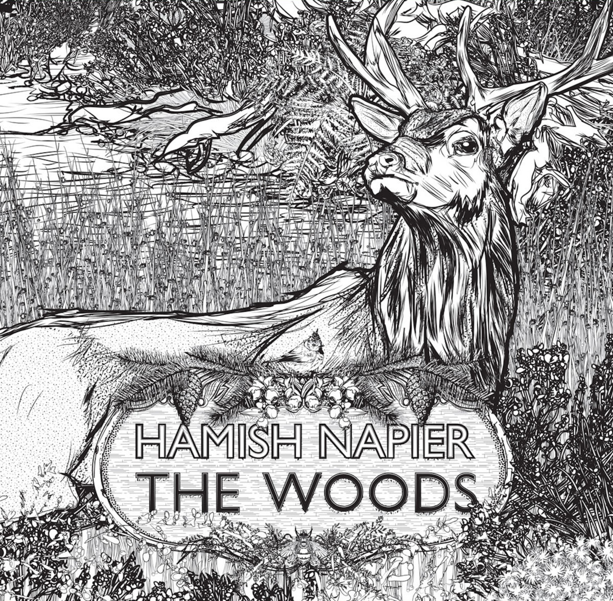 Hamish Napier - The Woods